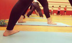 Yoga_Welttag_2015 (22)