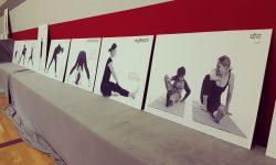 Yoga_Welttag_2015 (36)
