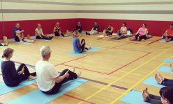 Yoga_Welttag_2015 (7)